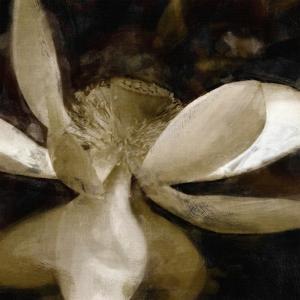 Bronze Lily VI by Noah Bay