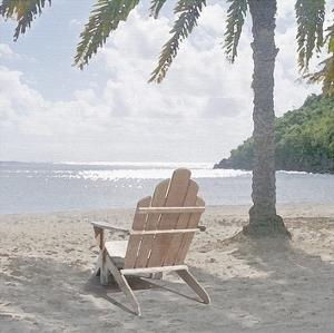 Carribean Dream by Noah Bay