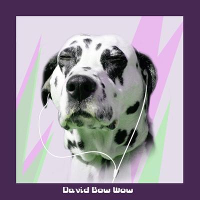 David Bow Wow by Noah Bay