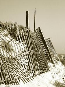 Fences in the Sand I by Noah Bay