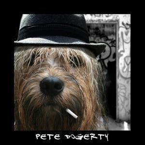 Pete Dogerty by Noah Bay