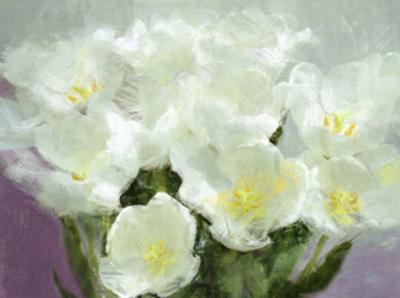 Sunlit Tulips I by Noah Bay