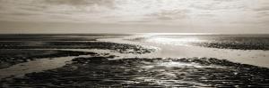 Tidal Streams by Noah Bay