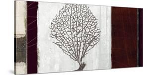 Coral II by Noah Li-Leger