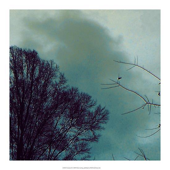 Nocturne II-Alicia Ludwig-Art Print