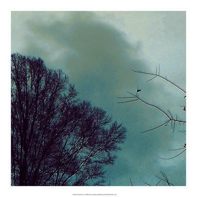 https://imgc.artprintimages.com/img/print/nocturne-ii_u-l-pxn0yx0.jpg?p=0