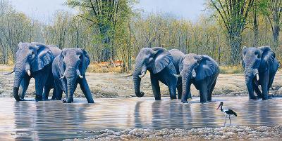 Nogatsaa Waterhole-Kim Thompson-Giclee Print