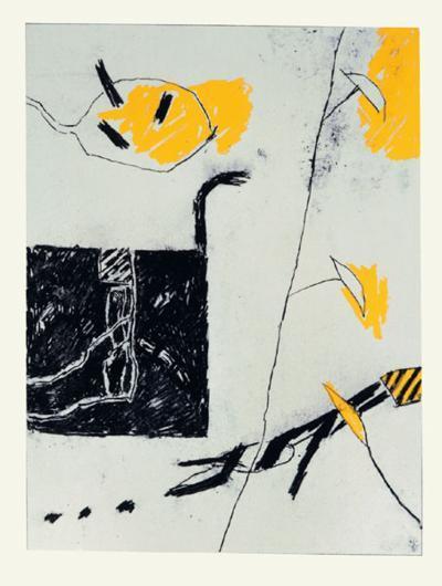 Noir Blanc Gris Jaune I-Francois Bruetschy-Limited Edition