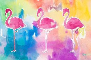 Sunset Flamingo Color Flow by Nola James