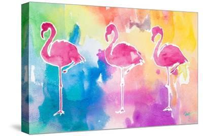 Sunset Flamingo Color Flow