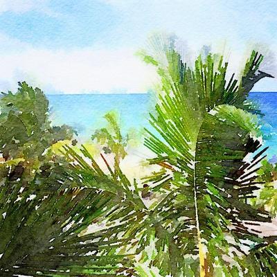 Watercolor Vero Beach