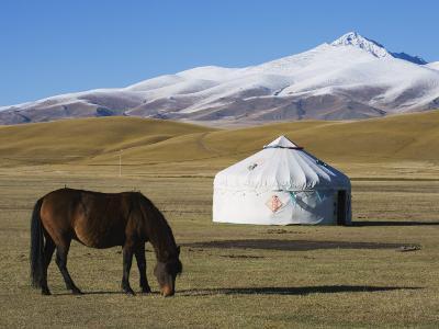 Nomads Horse and Yurt, Bayanbulak, Xinjiang Province, China, Asia-Christian Kober-Photographic Print