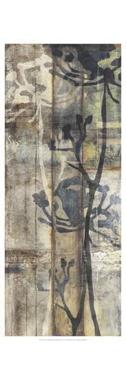Non-Embellished Lace & Light I-Jennifer Goldberger-Art Print