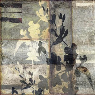 Non-Embellished Lace & Light IV-Jennifer Goldberger-Art Print
