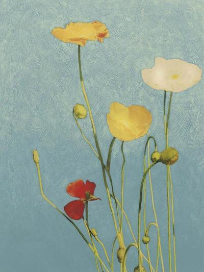 Non-Embellished Poppies I--Art Print
