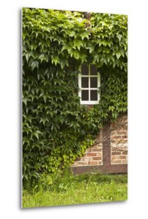 Farmhouse, Facade, Ivy Covered, Detail