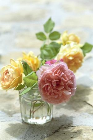 Summer, Flowers, Roses, Vase