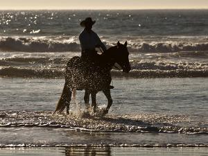 Cowboy on a Horse by Nora Hernandez