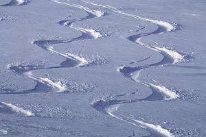 Deep Powder Snow, Ski Traces, Tyrol, Austria by Norbert Eisele-Hein