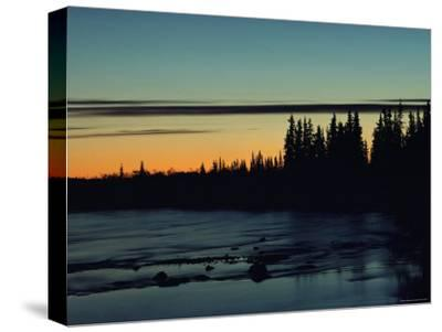 Sunset Behind Evergreen Trees
