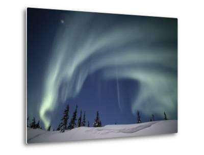 The Aurora Borealis over a Snowy Landscape with Evergreen Trees