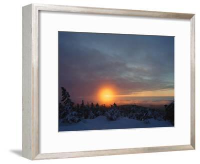 Winter Twilight View, Harz/Hochharz National Park, Germany