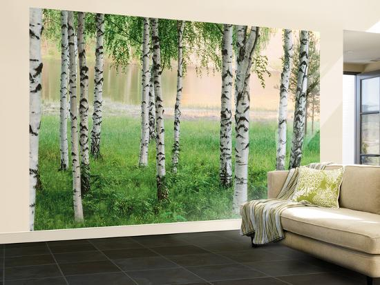 Nordic Forest Wall Mural Wallpaper Mural By Art Com