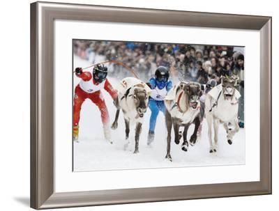 Nordic Reindeer Racing Championship-Espen Bergersen-Framed Photographic Print
