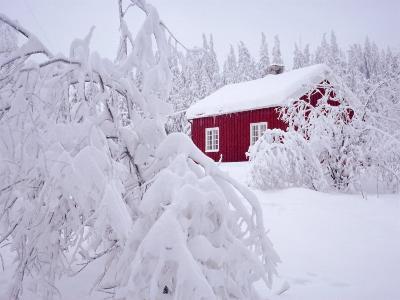 Nordmarka, Oslo, Norway, Scandinavia, Europe-Kim Hart-Photographic Print