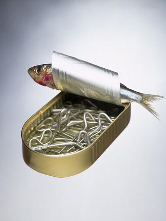 Sardine Can Inversion, 1997