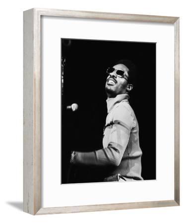 Stevie Wonder Performs in Concert