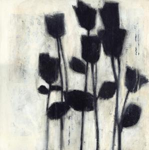Roses I by Norman Jr^