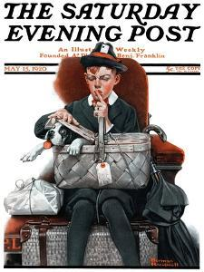 """Dog in Basket"" or ""Stowaway"" Saturday Evening Post Cover, May 15,1920 by Norman Rockwell"