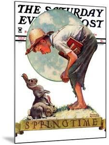 """Springtime, 1935 boy with bunny"" Saturday Evening Post Cover, April 27,1935 by Norman Rockwell"