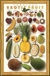 Tropical Exotic Fruit by Norman Van Aken