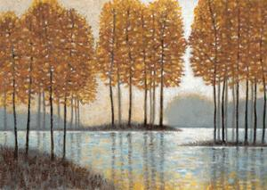 Amber Reflections by Norman Wyatt Jr.