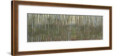 Blue Birch Forest II