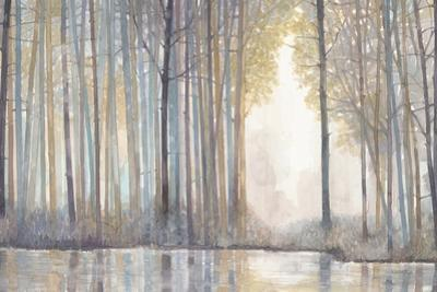 Forest Reflections by Norman Wyatt Jr.