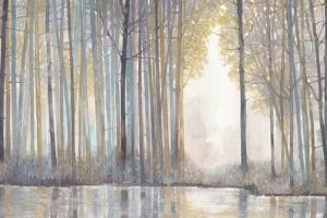 Forest Reflections by Norman Wyatt Jr^