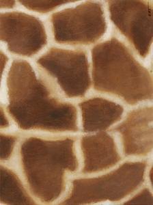 Giraffe II by Norman Wyatt Jr^