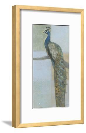 Resting Peacock II