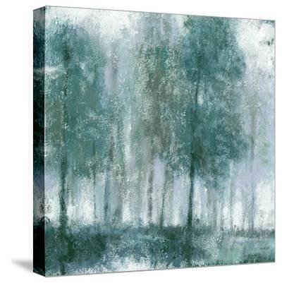 Somber Forest 1