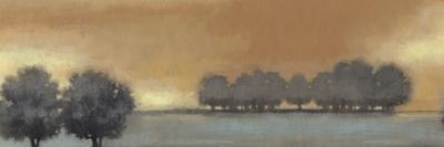 Tranquil Landscape V