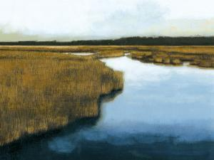 Wet Lands I by Norman Wyatt Jr^
