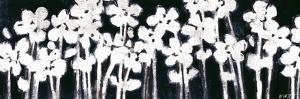 White Flowers on Black II by Norman Wyatt Jr.