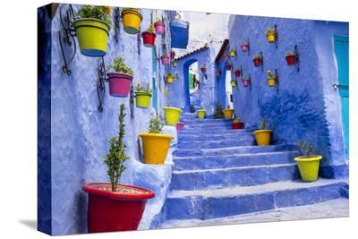 North Africa, Morocco, Traiditoional blue streets of Chefchaouen.-Emily Wilson-Stretched Canvas Print