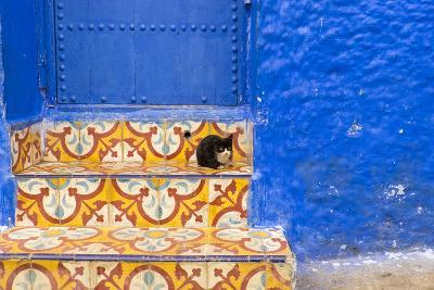 North Africa, Morocco, Traiditoional Moroccan architecture of Chefchaouen.-Emily Wilson-Photographic Print