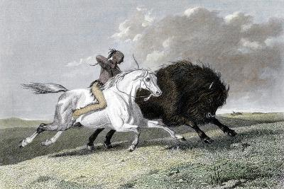 North American Indian Hunting Buffalo, 1861--Giclee Print