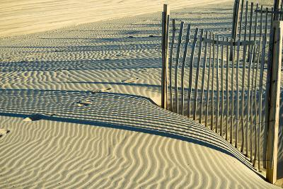North Carolina. Dune Fence, Light, Shadow and Ripples in the Sand-Rona Schwarz-Photographic Print