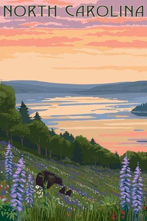 https://imgc.artprintimages.com/img/print/north-carolina-lake-and-bear-family_u-l-q1gqr2q0.jpg?p=0